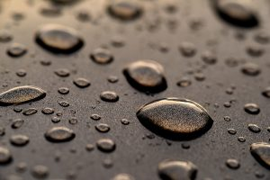 Water beads on the hood of a car are caused by surface tension.